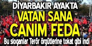 Diyarbakır ayakta: Vatan sana canım feda!