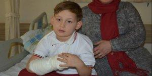 7 yaşındaki çocuğa pitbull saldırısı