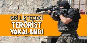 Gri listedeki terörist yakalandı