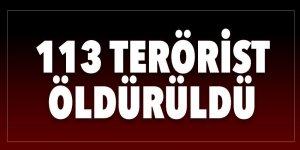 113 terörist etkisiz hale getirildi