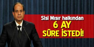 Sisi, Mısır halkından 6 ay süre istedi