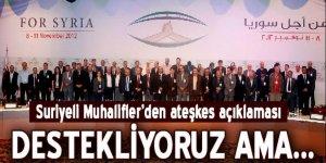 Suriyeli muhalifler: Destekliyoruz!