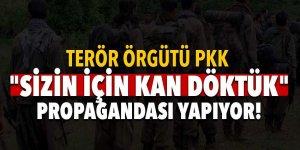 Terör örgütü PKK'dan 'Sizin için kan döktük' propagandası