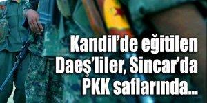 Namussuz ittifak: Kandil'de eğitilen DEAŞ'liler PKK'nın Sincar kampında