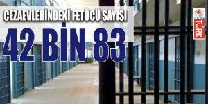 Cezaevlerindeki FETÖ'cü sayısı açıklandı: 42 bin 83 kişi