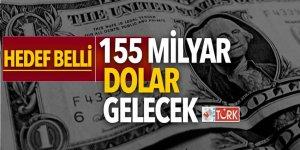 Türkiye'ye 155 milyar dolar gelecek
