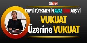 İşte CHP'li Elif Doğan Türkmen'in AVAZTURK arşivi! Vukuat üzerine vukuat...
