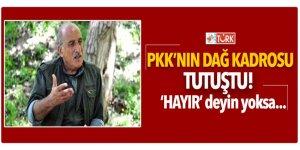 PKK'nın dağ kadrosu tutuştu! 'hayır' deyin yoksa...
