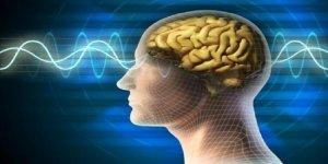Beyin Uzayda Değişime Uğruyor!