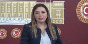 MHP'li vekili Arzu Erdem referandum kararını açıkladı