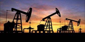 Türkiye doğalgaz rekorunu 14 Şubat'ta kırdı
