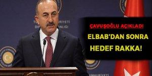 Çavuşoğlu: El Bab'dan sonra hedef Rakka