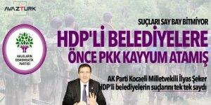 HDP'li Belediyelere, önce PKK 'kayyum' atamış! Suçları say say bitmiyor...