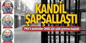 Kandil şapşallaştı! PKK'lı teröristler OHAL için açlık grevine başladı