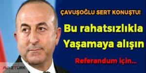 Çavuşoğlu: Türkiye daha da güçlenmeye devam edecek