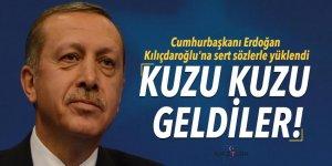 Cumhurbaşkanı Erdoğan: Kuzu kuzu geldiler!