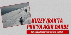 TSK: 9 terörist etkisiz hale getirildi, 3 terörist yakalandı