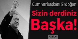 Erdoğan: Sizin derdiniz başka!