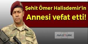 Şehit Ömer Halisdemir'in annesi vefat etti!