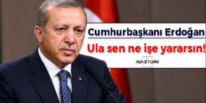 Cumhurbaşkanı Erdoğan: Ula sen ne işe yararsın!