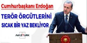 Cumhurbaşkanı Erdoğan:Sizi sıcak bir yaz bekliyor