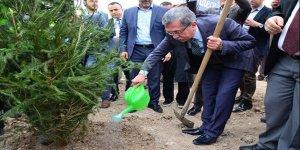 Pursaklar'da ağaçlandırma seferberliği sürüyor