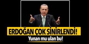 Erdoğan'dan CHP'li vekiler sert tepki! Yunan mu ulan bu!