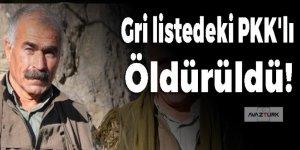 Gri listedeki PKK'lı bombardımanda öldürüldü!