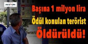 Başına 1 milyon lira ödül konulan terörist öldürüldü!
