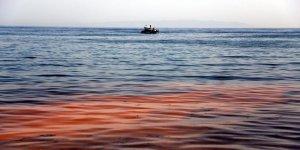 Marmara Denizi turuncuya büründü!