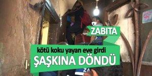 Beyoğlu'nda kötü koku yayan eve giren zabıta şaşkına döndü