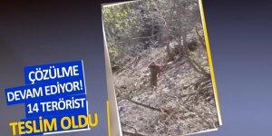 PKK vurgun yedi! 14 terörist teslim oldu