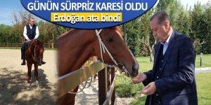 Cumhurbaşkanı Erdoğan ata bindi! Danışmanı o not ile paylaştı...
