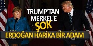 Trump'tan Merkel'e şok: 'Erdoğan harika bir adam'