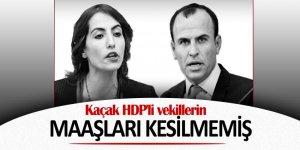 Kaçak HDP'li vekiller maaş almaya devam ediyor