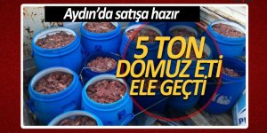 Aydın'da satışa hazır 5 ton domuz eti ele geçti