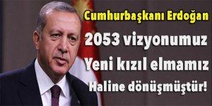 Erdoğan: 2053 vizyonumuz yeni kızıl elmamız haline dönüşmüştür