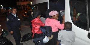 Ayvacık'ta 48 kaçak daha yakalandı