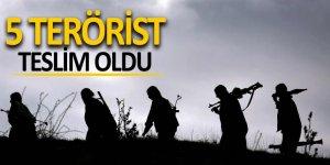 Uludere ve Silopi'de 5 terörist teslim oldu
