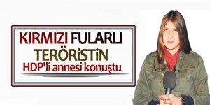 Kırmızı fularlı teröristin HDP'li annesi konuştu