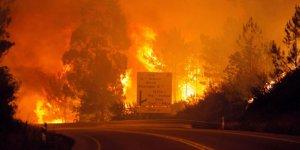 Portekiz yanıyor. Ölü sayısı 62'ye çıktı