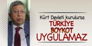 İlnur Çevik: 'Kürt Devleti kurulursa Türkiye, boykot uygulamaz'