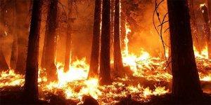 Meteoroloji'den 'orman yangını' uyarısı!