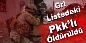 Gri listedeki PKK'lı terörist öldürüldü