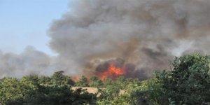 Orman yangını nedeniyle köy boşaltıldı!