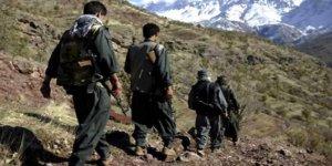 PKK'nın gençlik yapılanmasına büyük darbe!