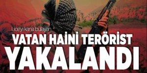 Lice'yi kana bulayan vatan haini terörist yakalandı