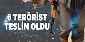 Şırnak'ta PKK'dan kaçan 6 terörist teslim oldu