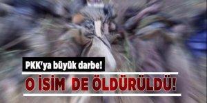 PKK'ya büyük darbe!  Sözde Güney sorumlusu öldürüldü!