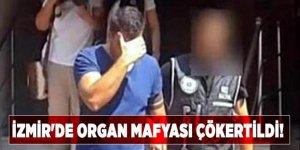 İzmir'de organ mafyası çökertildi!
